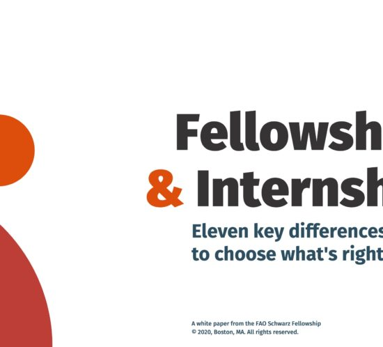 Fellowships and Internships white paper cover design